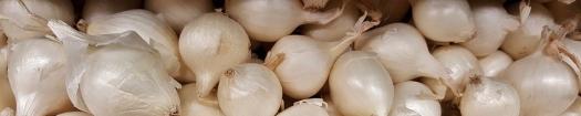 onion-1513186_960_720.jpg